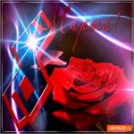 Прекрасная роза с 8 марта