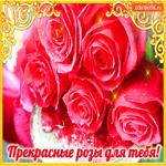 Прекрасные розы только для тебя