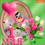 Приятных майских праздников - С 1 мая