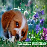 Прикольная открытка всемирный день домашних животных