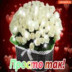 Открытка просто так с белыми розами