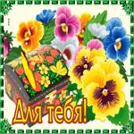 Картинка с цветами для тебя