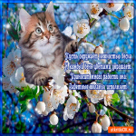 Красивая открытка с весной стихи