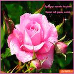 Пусть роза подарит тебе любовь