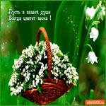 Пусть в душе всегда цветет весна