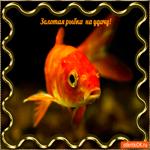 Рыбка золотая на удачу