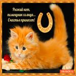 Рыжий кот сегодня счастье принесёт