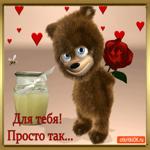Роза для тебя просто так