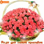 Розы для самой красивой женщине