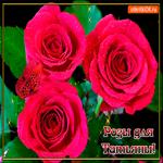 Розы для любимой Татьяны