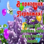 С 1 мая - Желаю счастья впереди
