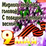 С 9 мая - Мирного неба над вашей головой