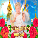 С днём ангела Антон — красивые розы