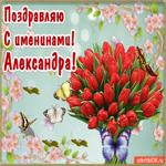 С Днём имени Александра