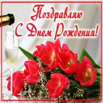 С днём рождения - Дарю букет цветов