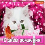 Прикольная открытка с днем рождения женщине
