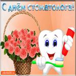 С Днём Стоматолога