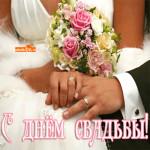 С днём свадьбы мои любимые