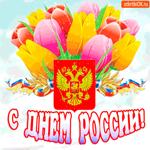 С Днём России мои друзья