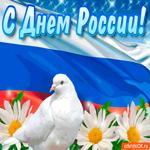 С Днём России поздравляю вас