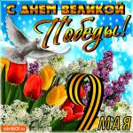 С Днём Великой Победы - 9 мая