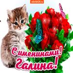 С именинами Галина
