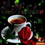 С любовью красная роза