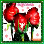 С любовью волшебные цветы дарю