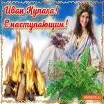 С наступающим праздником Ивана Купала