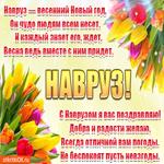 С Наврузом, с праздником весны