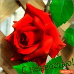 С нежностью роза для тебя