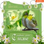 С первым днём прекрасной весны