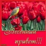 С первым днём весны цветы