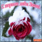 С первым днём Зимы Поздравляю тебя