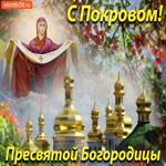 С Покровом Пресвятой Богородицы Желаю вам добра