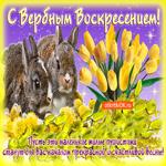 С прекрасным началом весны, с Вербным Воскресеньем