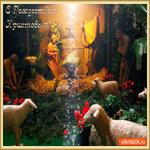 С Рождеством Христовым поздравляю я всех