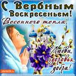 С Вербным Воскресеньем - Весеннего тепла желаю
