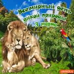 С всемирным днем дикой природы