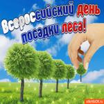 С всероссийским днем посадки леса