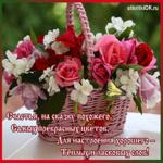 Самые прекрасные цветы