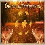 Прикольная открытка с осенью