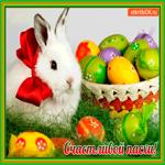 Счастливой Пасхи всем желаю