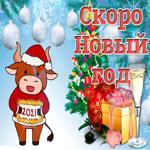 Скоро новый год счастья вам и здоровья