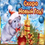 Скоро новый год крысы