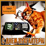 Смешная картинка на День бухгалтера в России