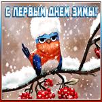 Смешная картинка Первый День Зимы