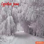 Снежная и суровая зима