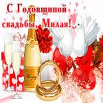 Со свадебной годовщиной, Дорогая