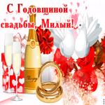 Со свадебной годовщиной, Дорогой
